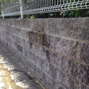 ブロック塀 その1 洗浄前